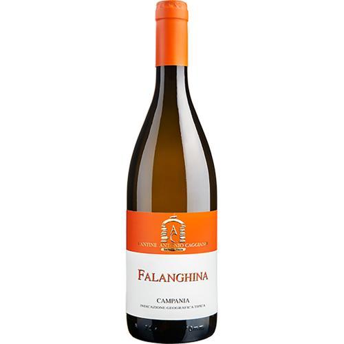 Falanghina Campania Antonio Caggiano 2020